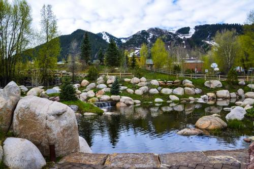 Aspen park Rockies 12x18