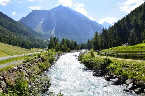 Austria 5 12x