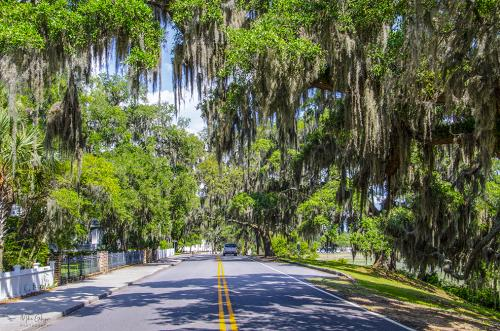 Beaufort South Carolina 1 12x
