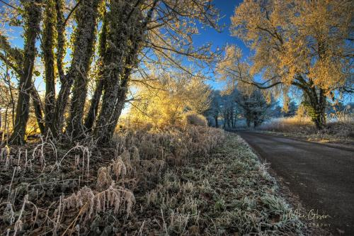 Frosty Lane, Northamptonshire mgp