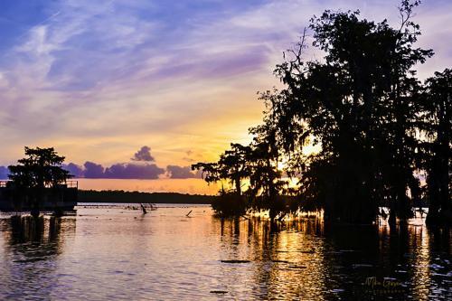 Lake Martin Louisiana sunset 2 12x18