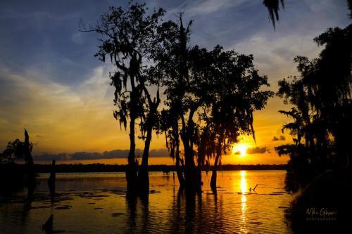 Lake Martin sunset 12x18