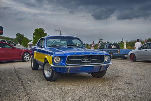 Mustang near Gulfport, MS 12x
