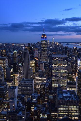 NYC night 12x