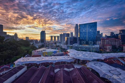 Singapore sunrise 12x8