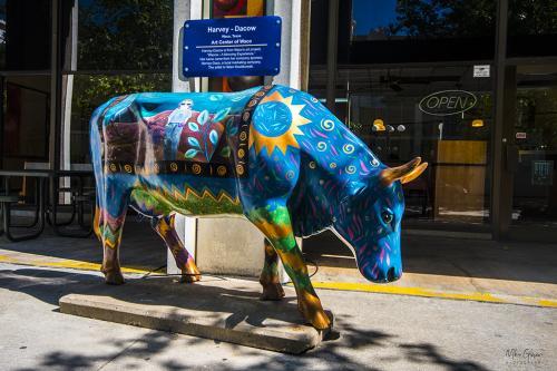 Street Art Oklahoma City 3 12x