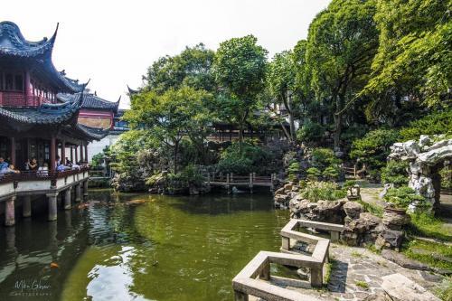 Yu Garden Shanghai 5 12x18