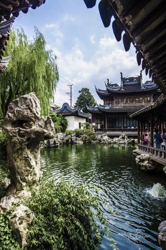 Yu Garden Shanghai 9 12x8