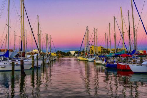 dawn, bayside, treasure island fl 18x12