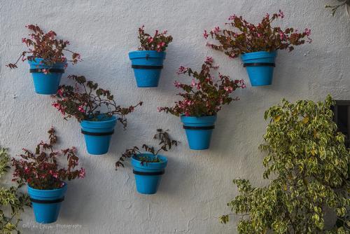 mijas flowerpots 12x