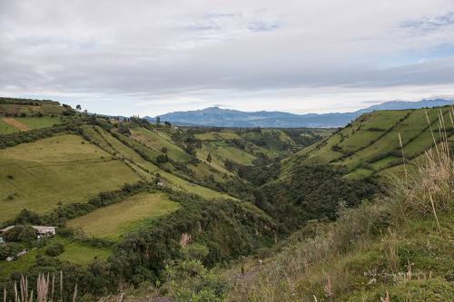 Antisana National Reserve