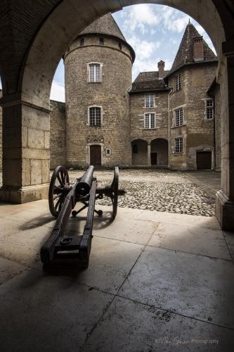 Chateau de Virieu inner courtyard with canon