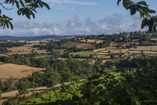 Fields near Vaumery
