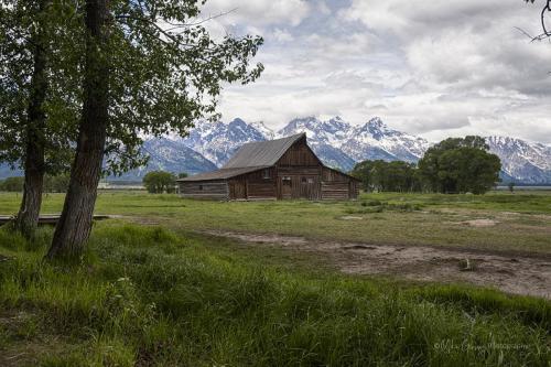 Grand Tetons Mormon  barn x