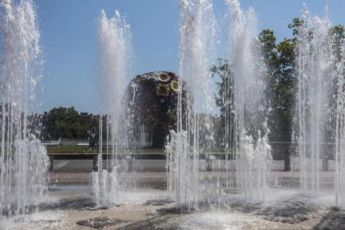 Lyon fountain
