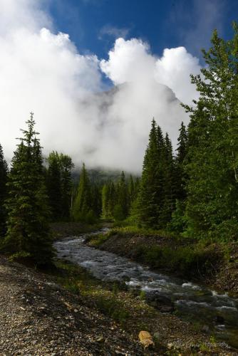 Glacier National Park 13