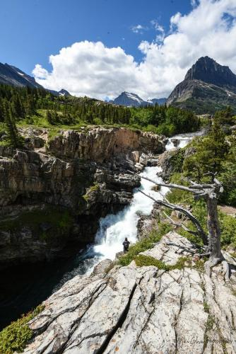 Glacier National Park15