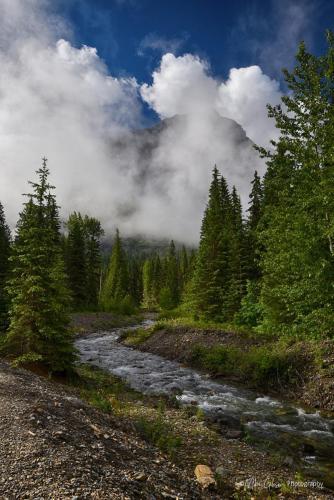 National Glacier Park 25