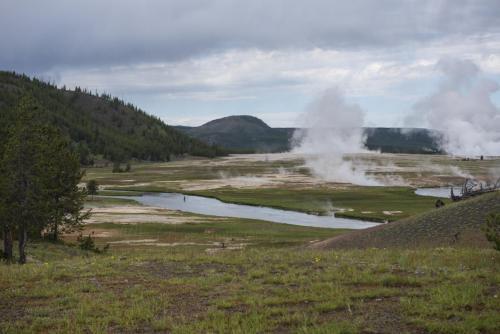 Yellowstone 12 x