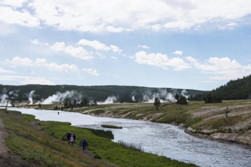 Yellowstone 16 x