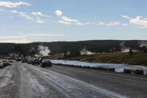 Yellowstone 18 x