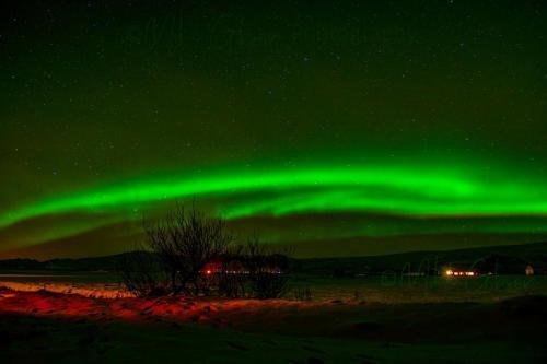 aurora from oct 19 x