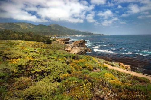 california coast 18x12 mg
